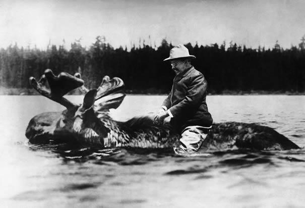 http://www.history.com/images/media/slideshow/teddy-roosevelt/theodore-roosevelt-moose.jpg