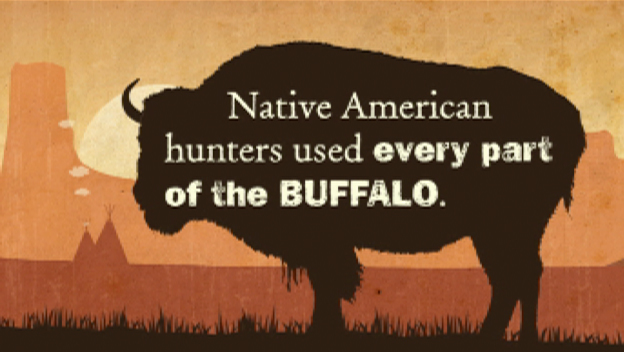 The Buffalo and Native Americans