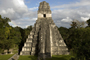 The Rise and Fall of the Maya Empire